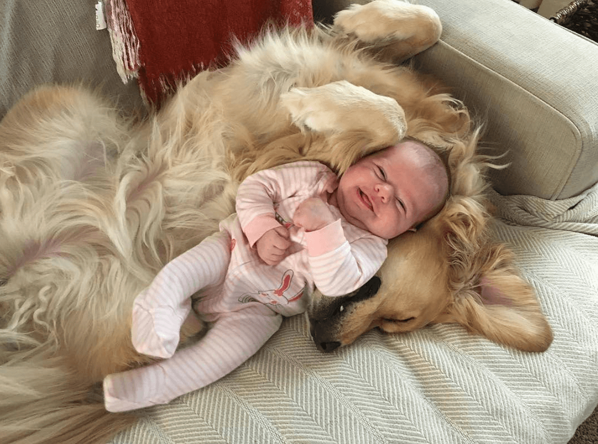Baby laying on dog