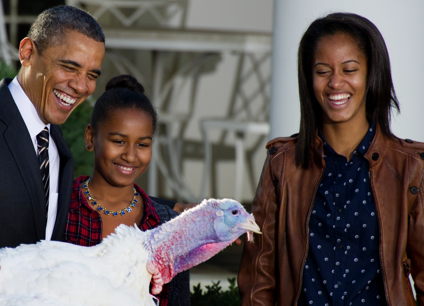 Barack Obama pardons a turkey