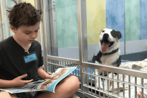 These Kids Reading to Dogs Will Melt Your Heart