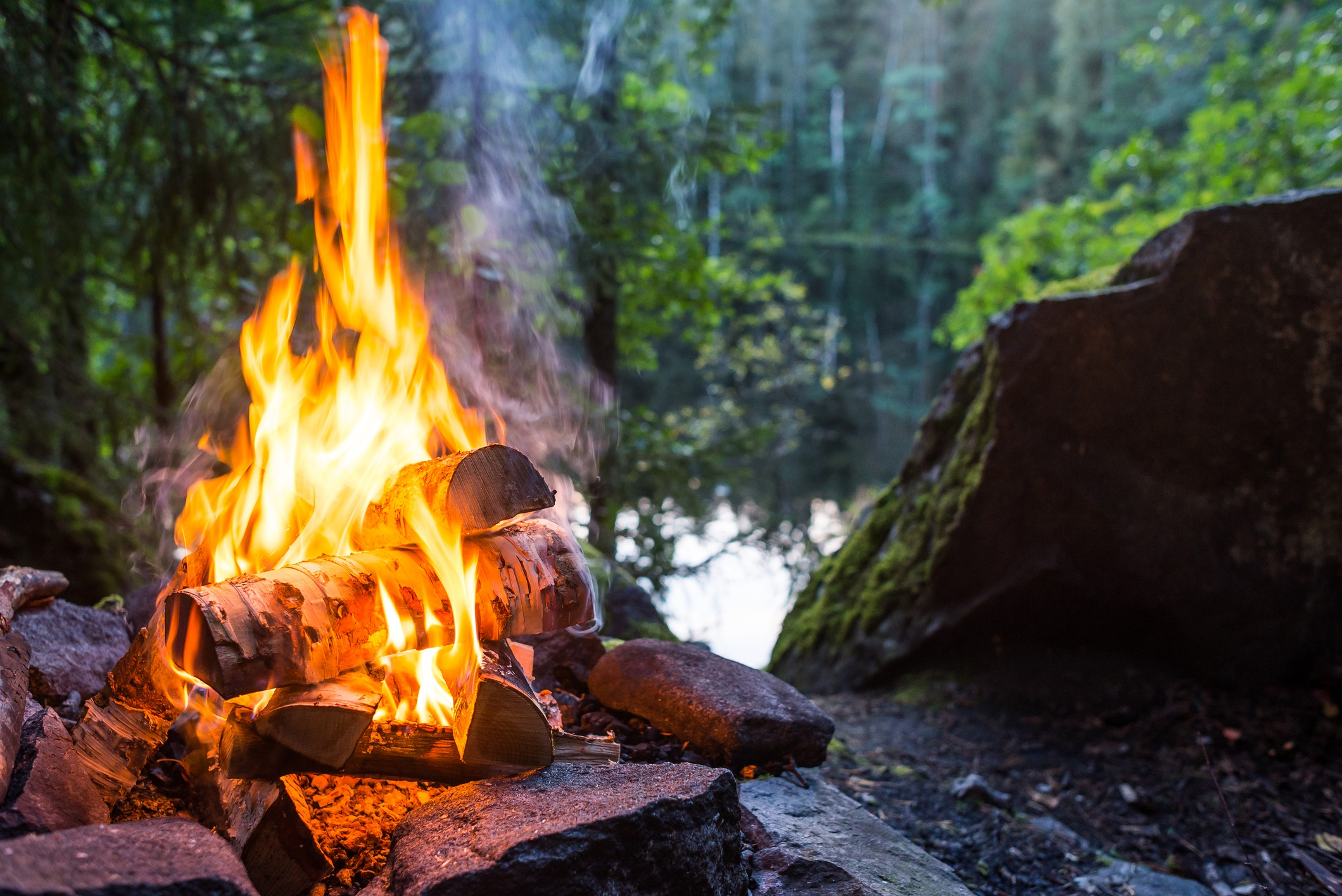 Closeup of burning campfire in forest