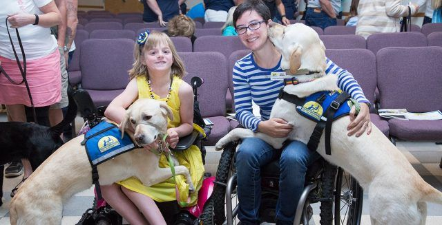 Canine companions service dogs with kids