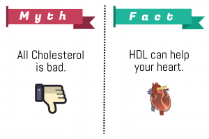 You Should Never Believe These Myths You've Heard About Cholesterol