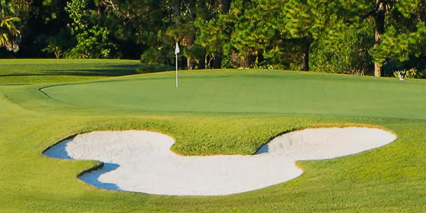 Disney Golfing