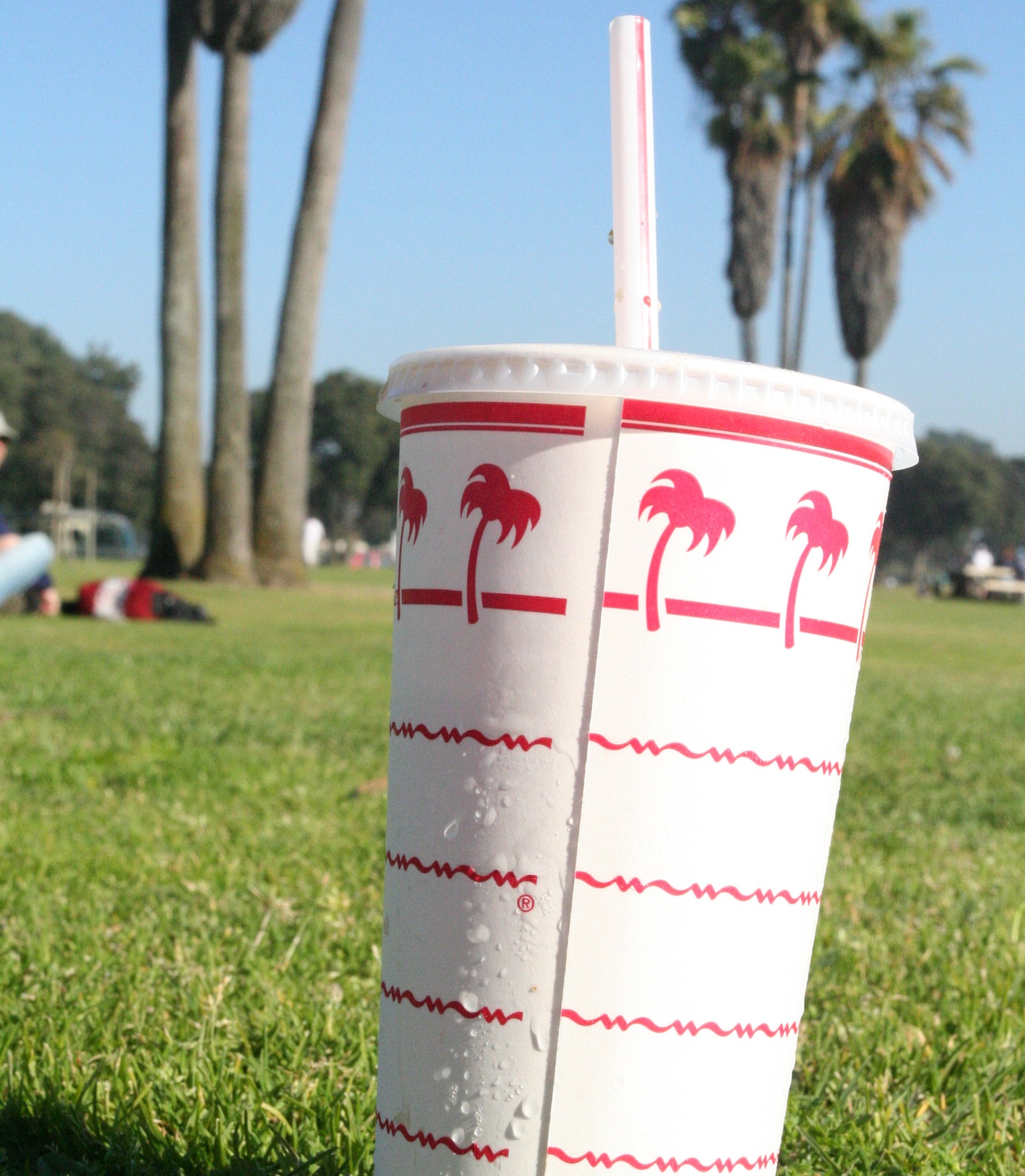 In n out drink