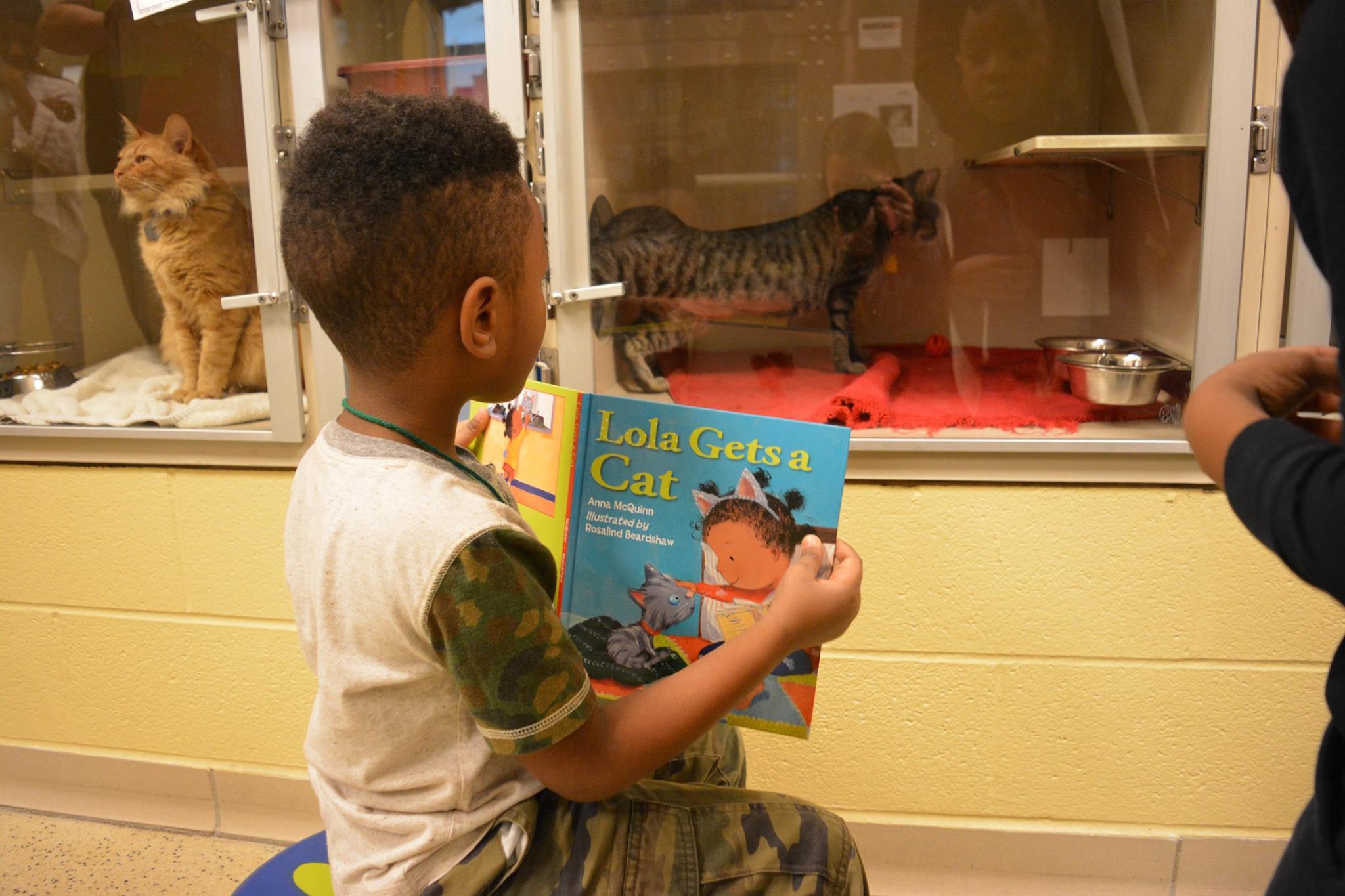 Kid reading to cat
