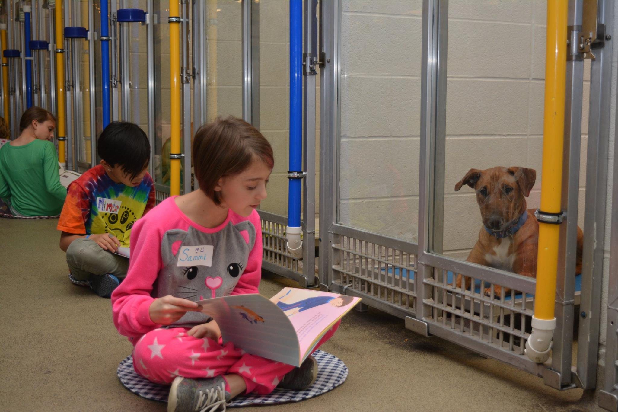 Kids read to dogs