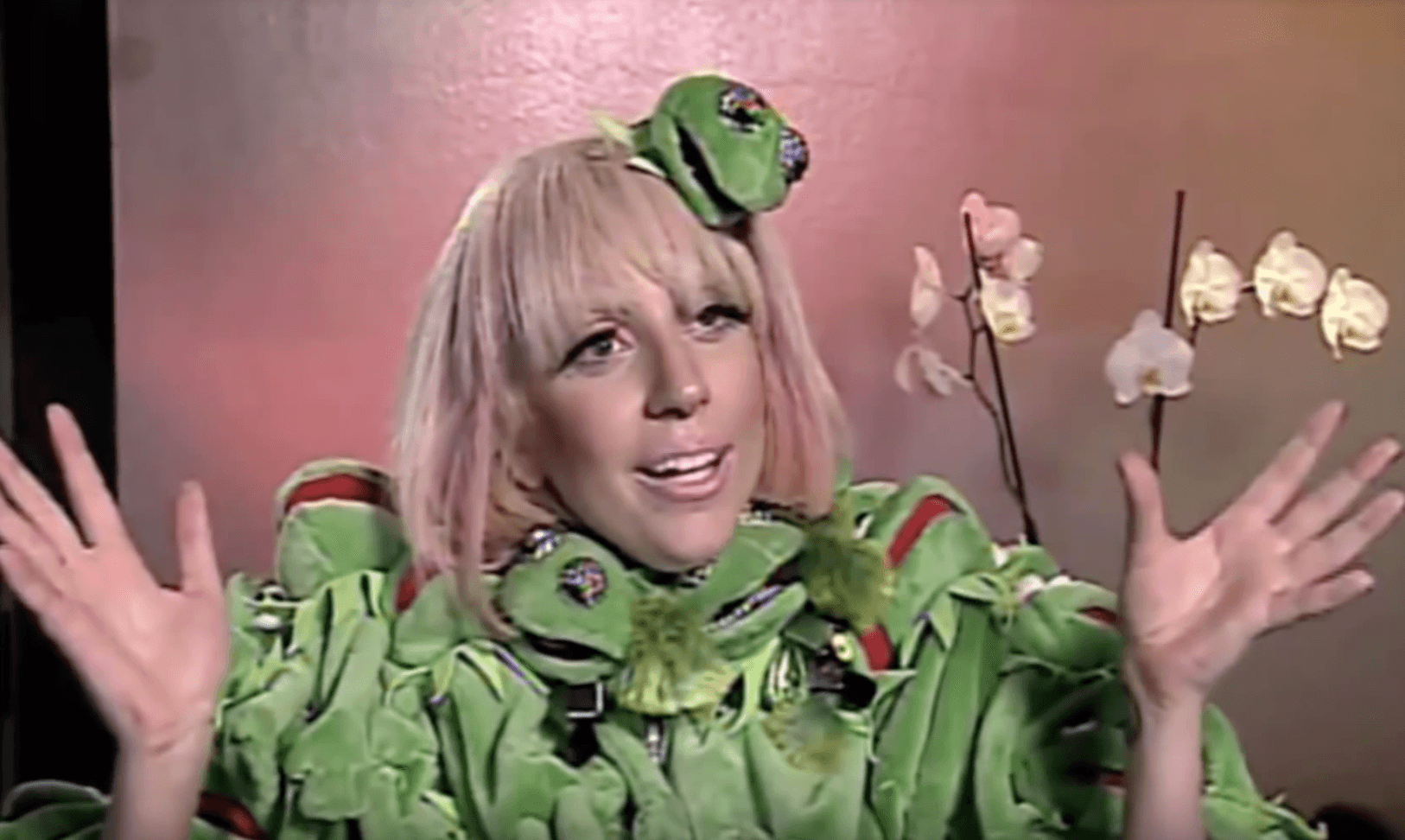 Lady Gaga kermit jacket