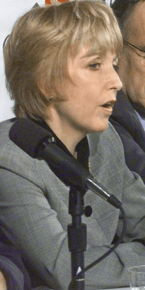 Mary Donohue speaking at a panel.