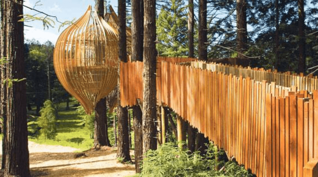Redwoods Treehouse