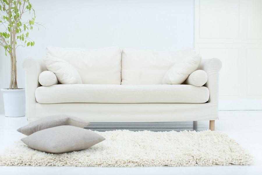 Sofa and a rug