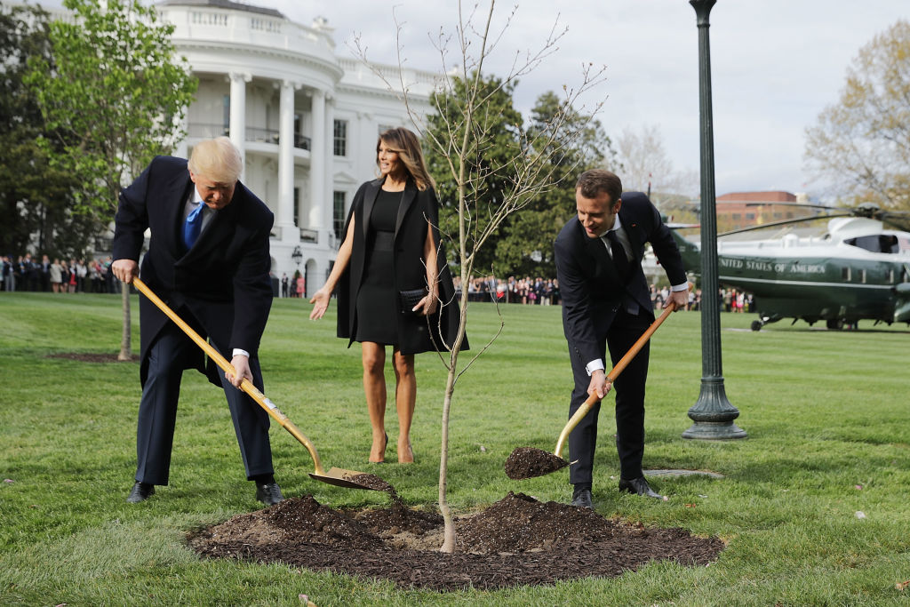 Donald and Melania Trump planting a tree at the White House