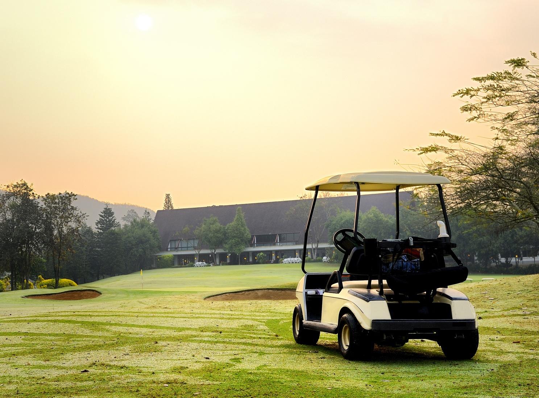 Golf club cart