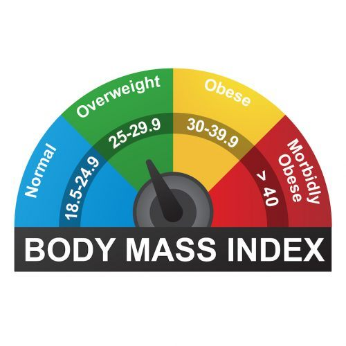 BMI or Body Mass Index Infographic Chart