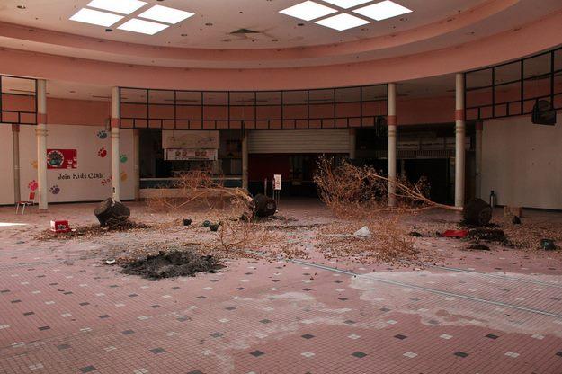 Cloverfield Mall