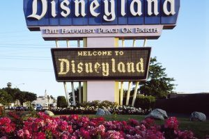 Every Disney Park in the World, Ranked By Popularity