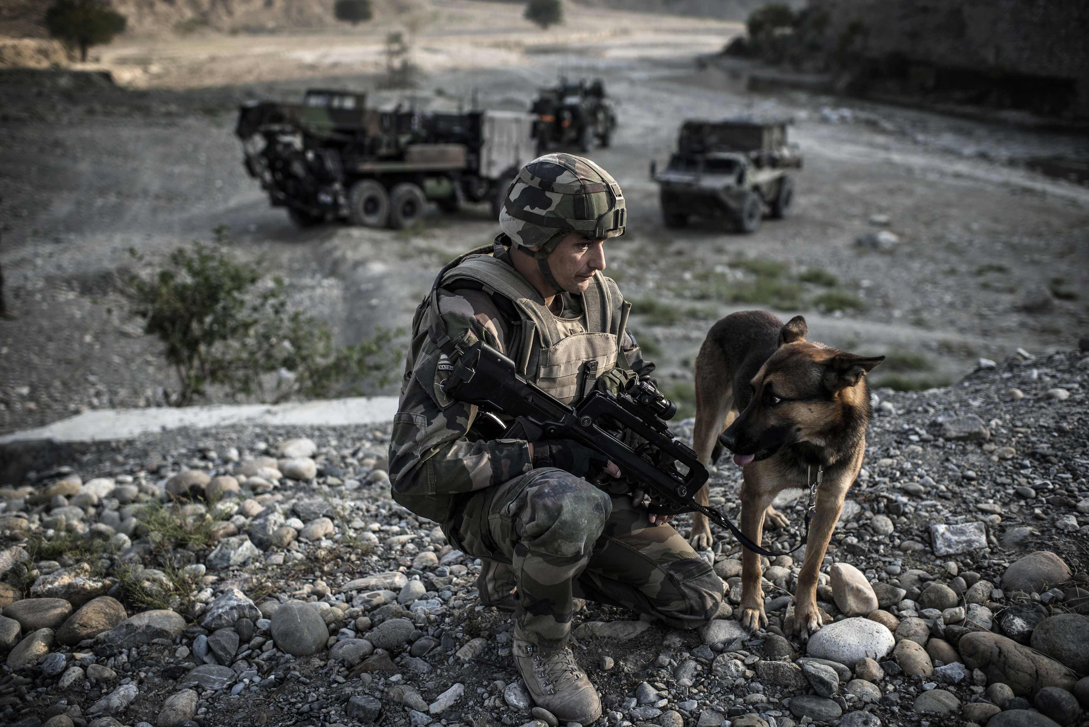 A French soldier crouches beside a dog before the passing of a convoy