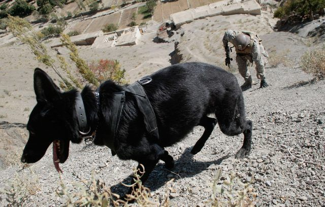 US Army Searches For Militants In Mountains of Afghanistan