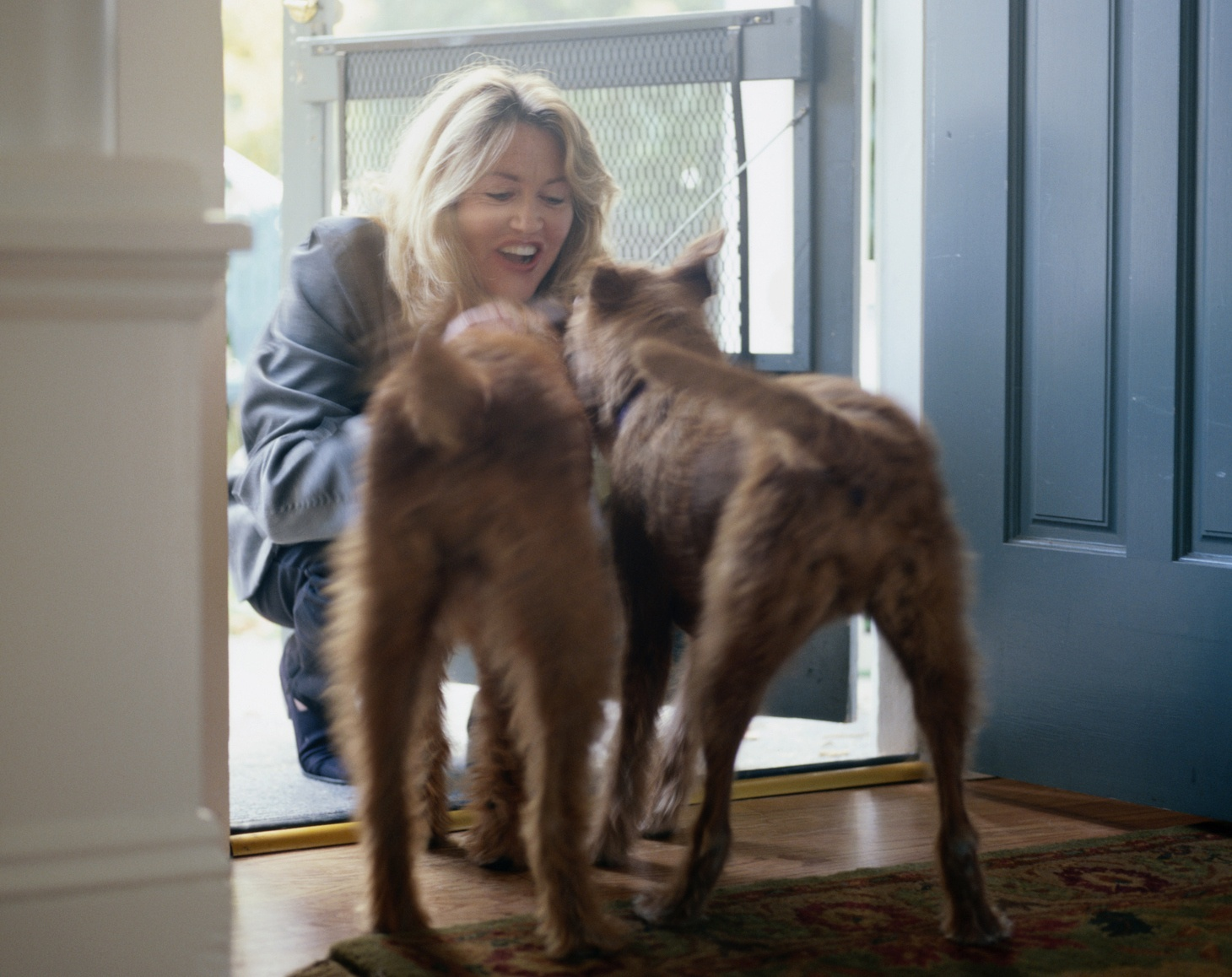 Woman Greeting Irish Terriers at Front Door