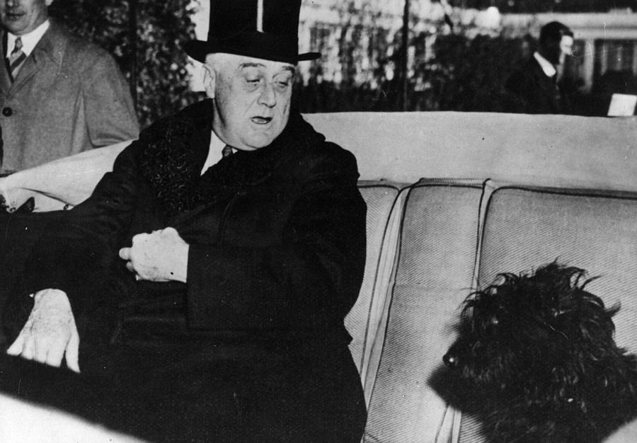 Franklin Delano Roosevelt in his car with his Scottish terrier, Mr Falla.