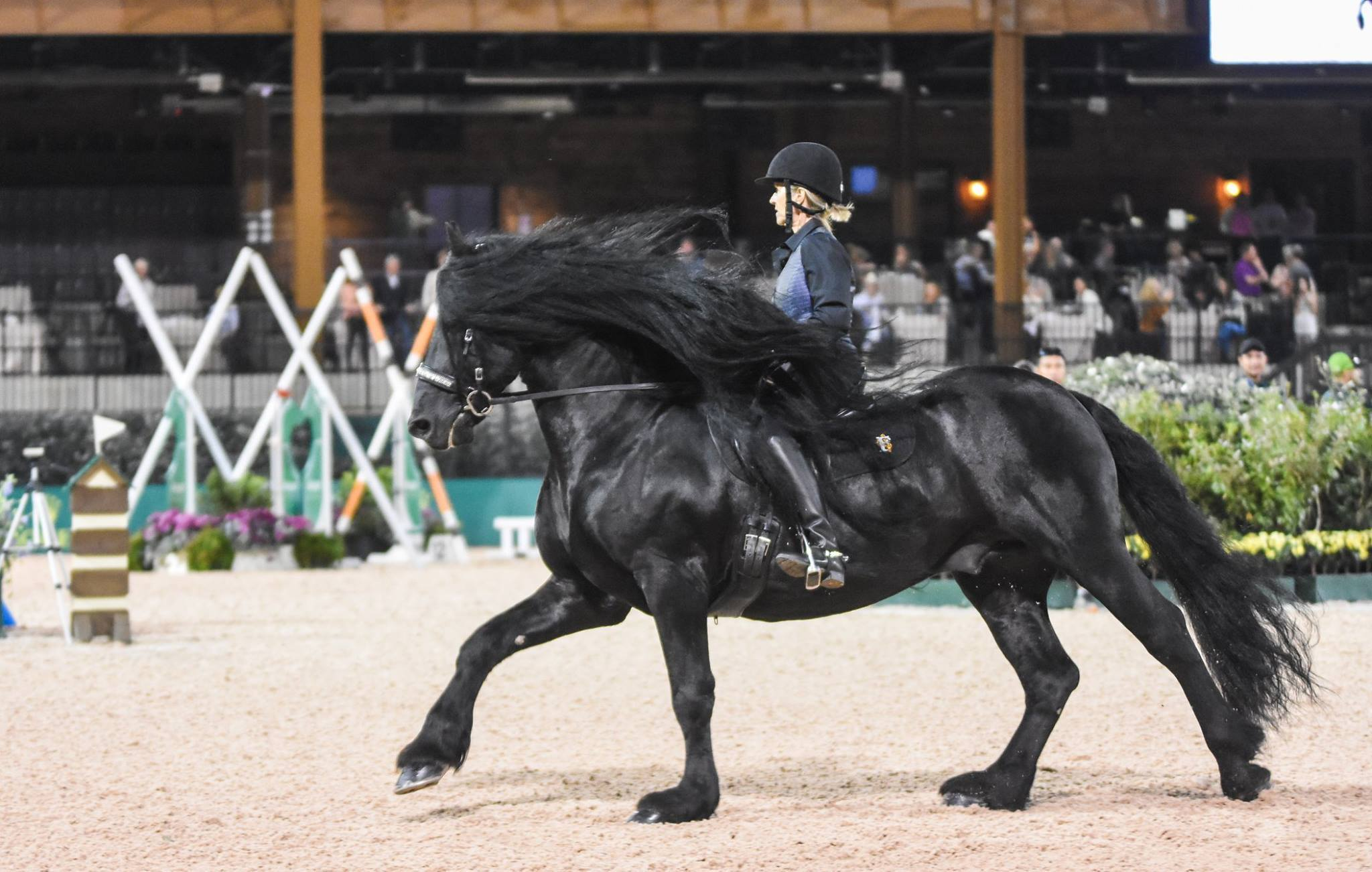 Frederik the Great in competition