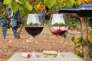 Is Red Wine Good for Your Heart? How It Might Cause High Blood Pressure