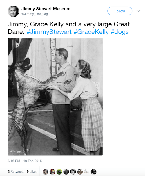 Grace Kelly's dog featured in a photograph.