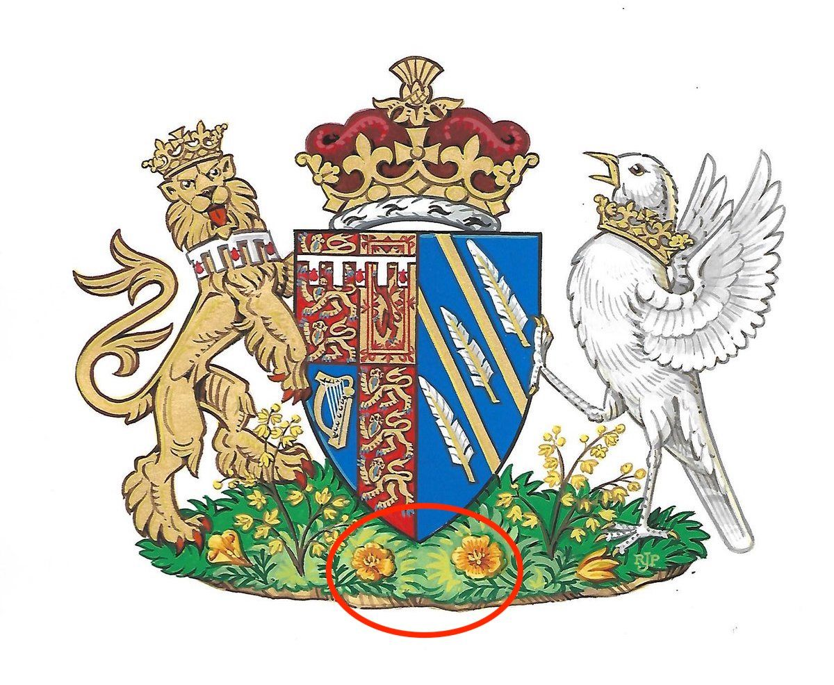 Harry Meghan coat of arms