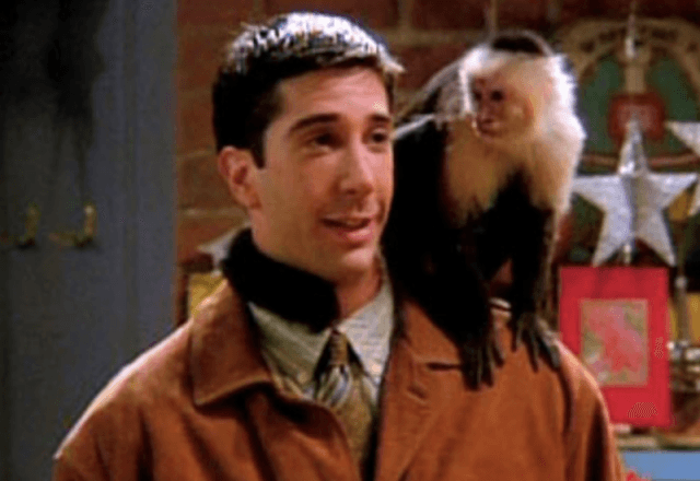 Marcel looking at Ross as he stands on his shoulder.