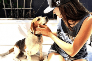 From Kill Shelter to Palace Life: See How Meghan Markle's Beagle Is Living a Fairy Tale