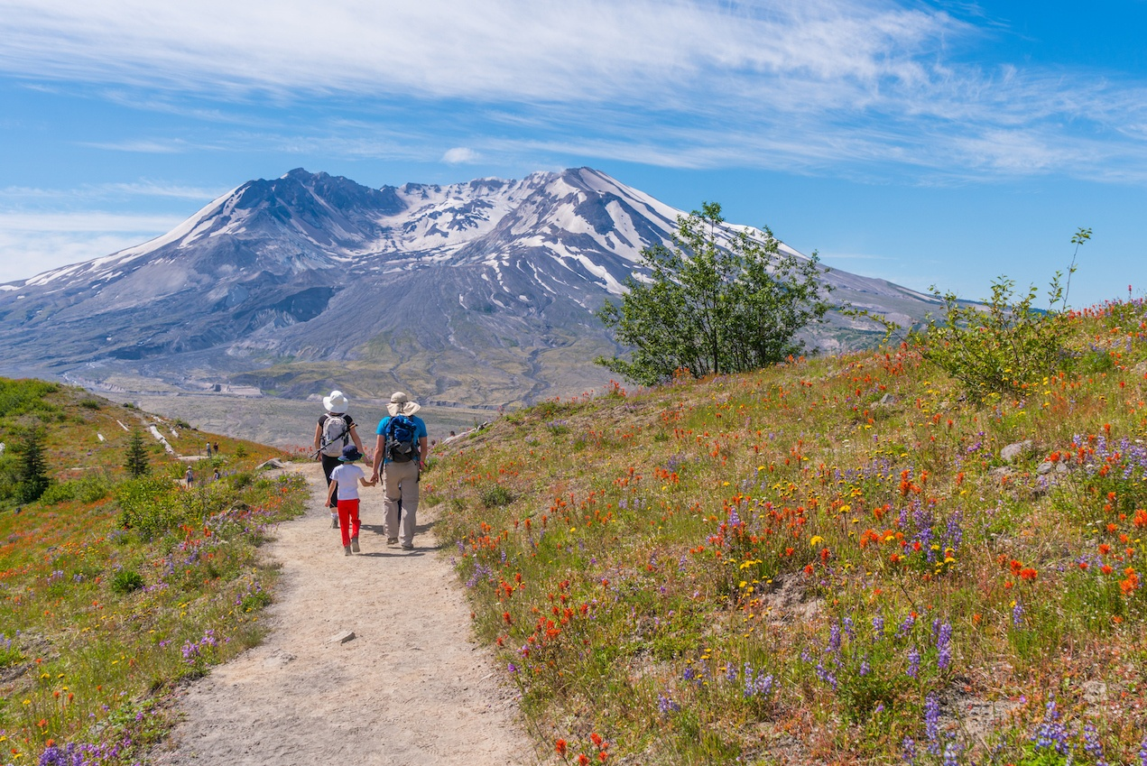 The breathtaking views of the volcano and amazing valley of flowers.