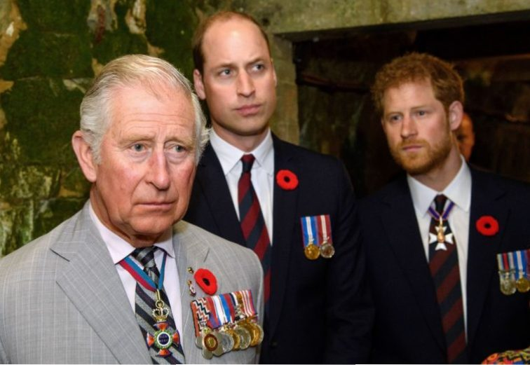 Prince Charles, Prince of Wales, Prince William, Duke of Cambridge and Prince Harry visit the tunnel and trenches at Vimy Memorial Park