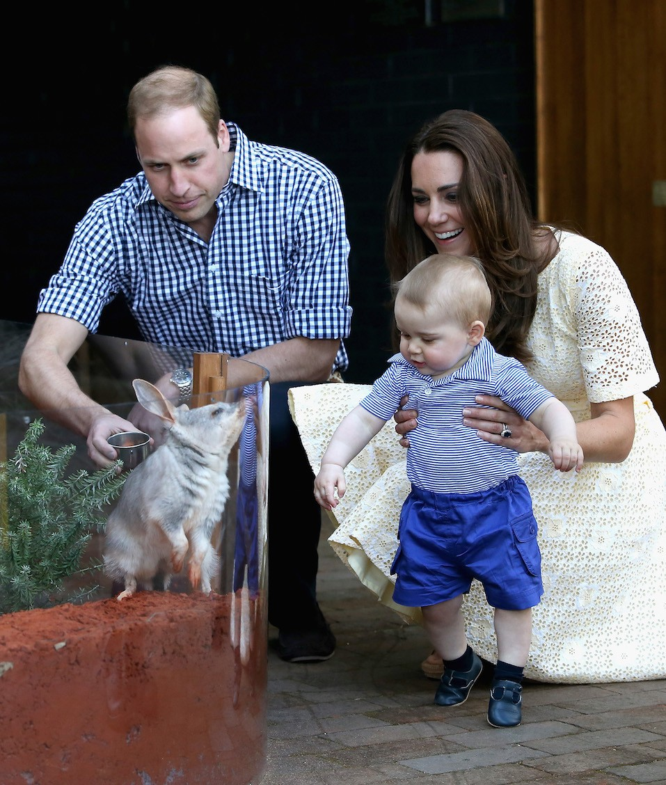 Catherine, Duchess of Cambridge holds Prince George of Cambridge as Prince William, Duke of Cambridge look whilst meeting a Bilby called George at Taronga Zoo