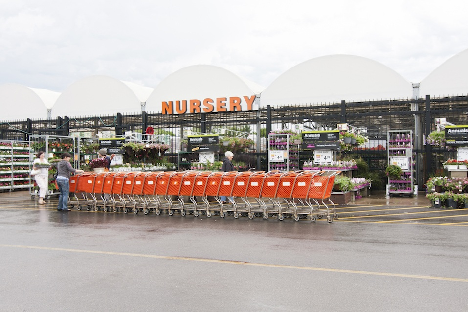 The Home Depot Nursery