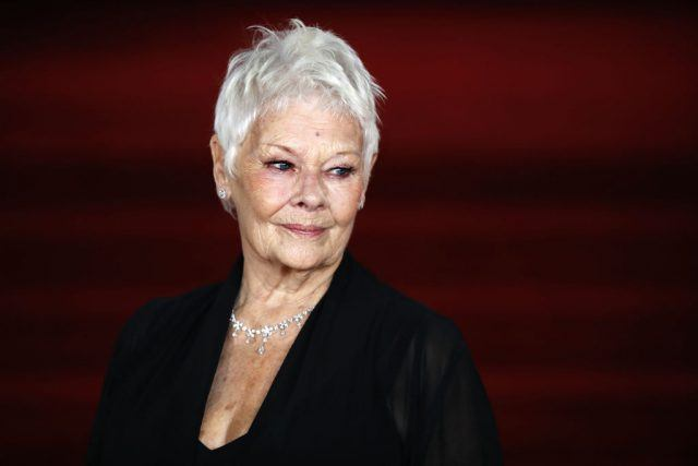 English actress Dame Judi Dench poses upon arrival to attend the world premiere of the film 'Murder