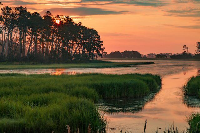 Chincoteague National Wildlife Refuge in Virginia