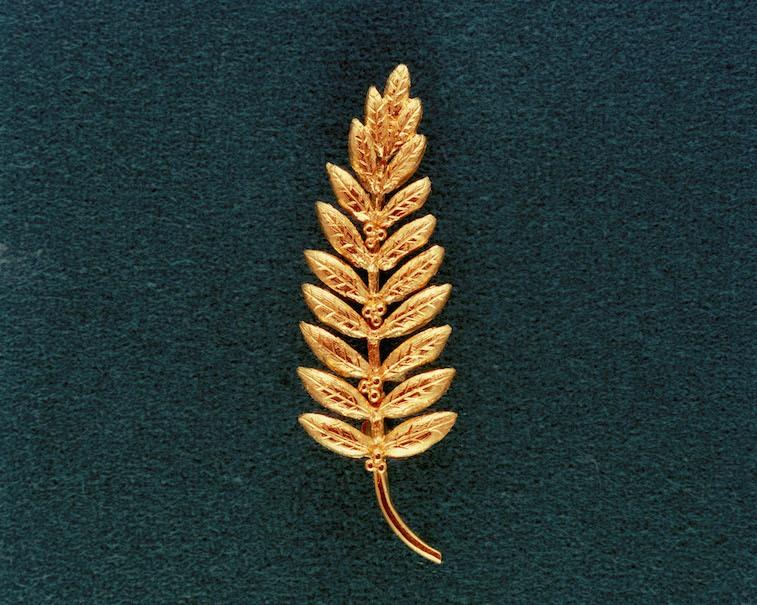 Golden olive branch