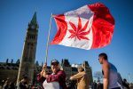 Canada Legalized Marijuana and That Could Solve Their Opioid Problem