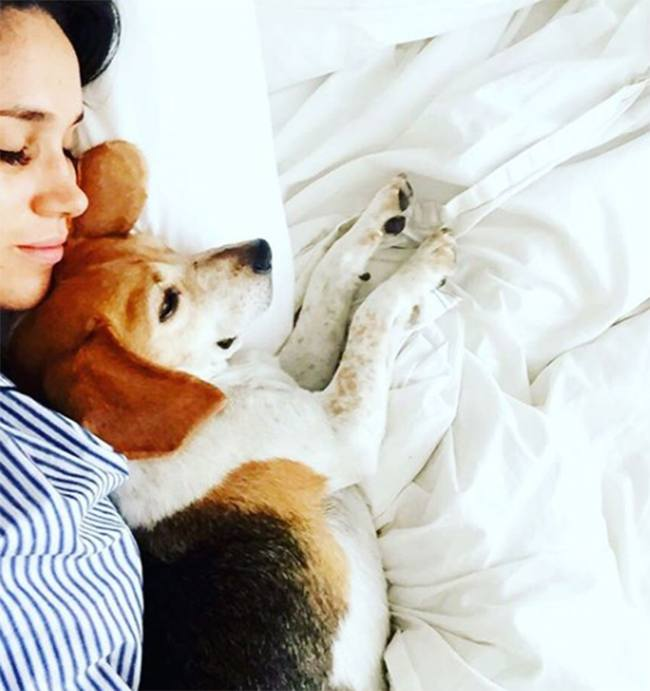 Meghan cuddles with Guy the beagle