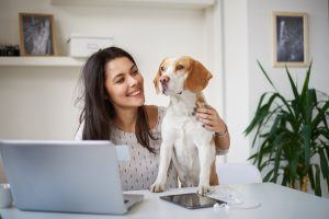 How Take Your Dog to Work Day Can Benefit Your Mental Health