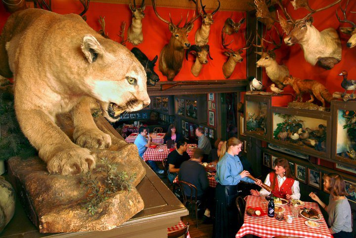 The Buckhorn Exchange Restaurant in Colorado
