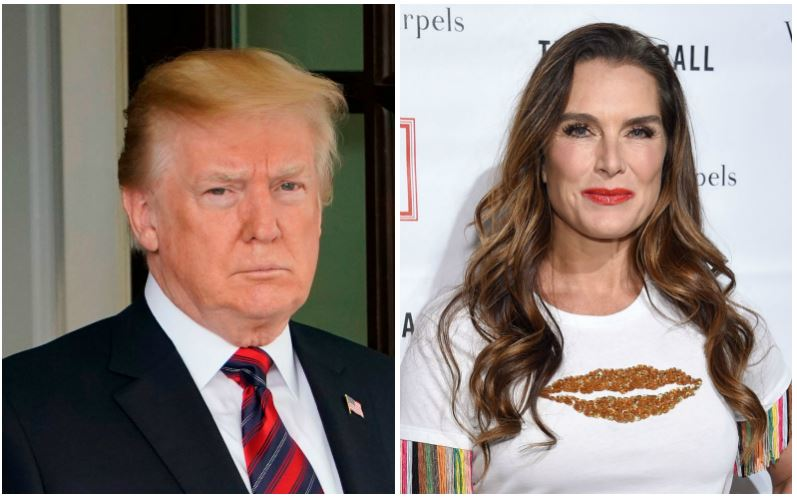 Donald Trump and Brooke Shields composite image