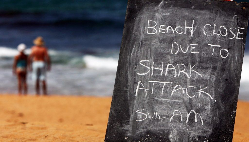 Shark attack sign