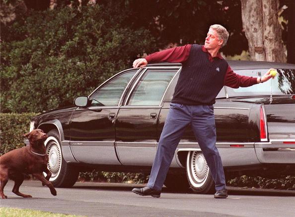 Bill Clinton throws a ball for his dog