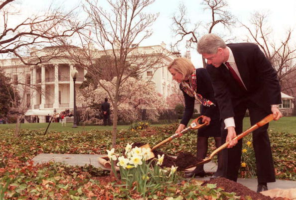 Bill and Hillary plant a tree
