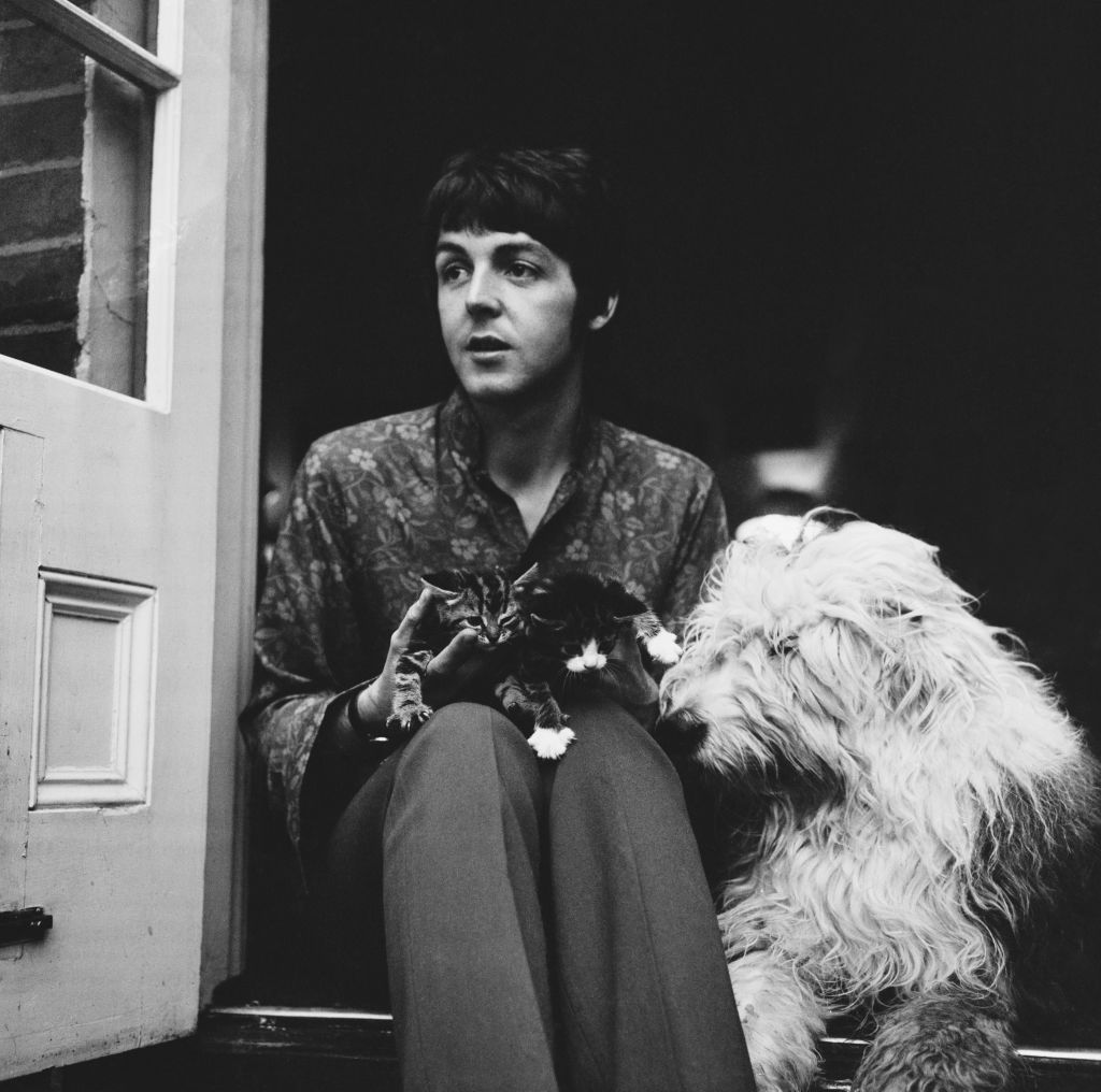 English singer-songwriter and musician Paul McCartney with his dog, English Sheepdog Martha, and two kittens
