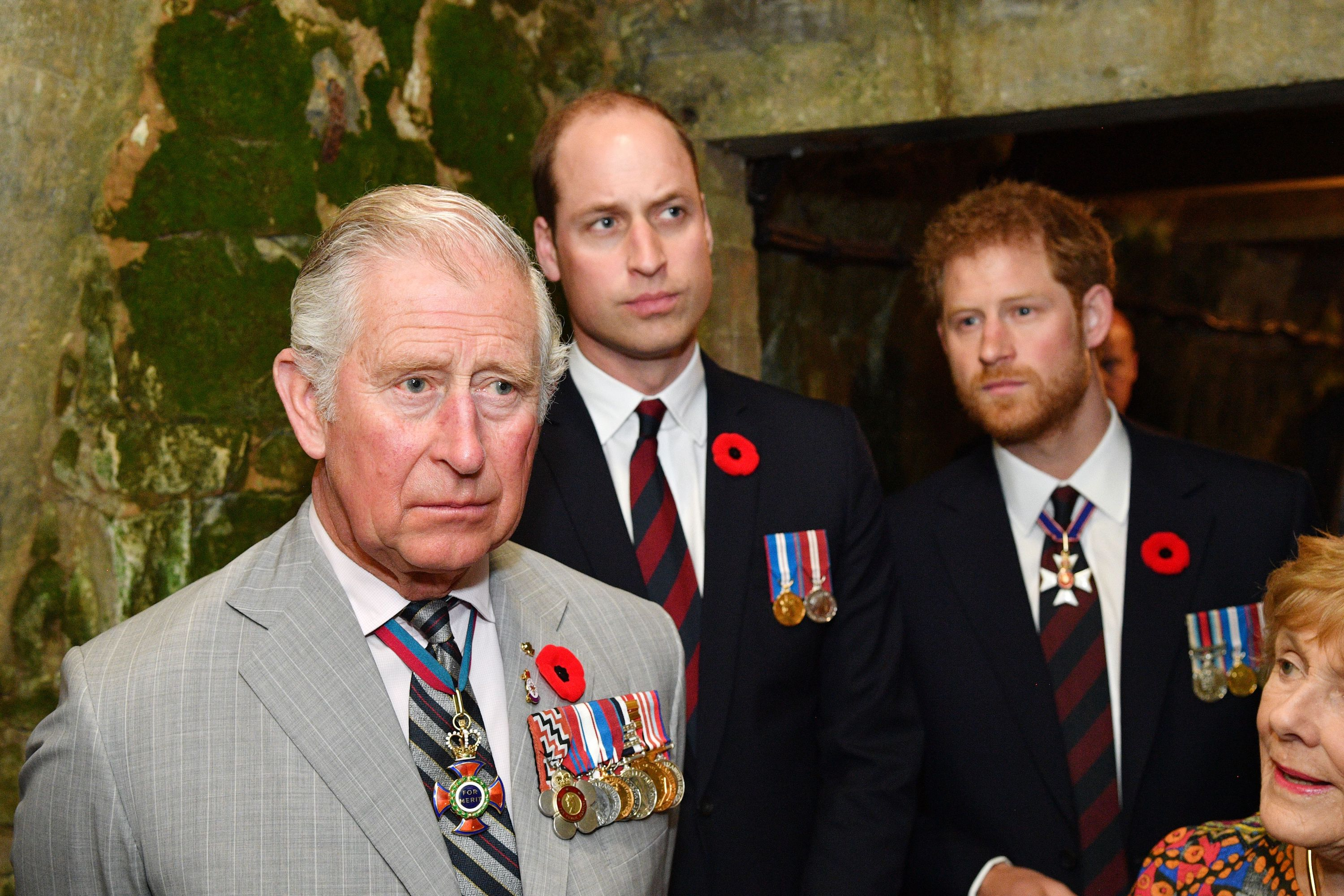 Prince Charles, Prince William, and Prince Harry visit the tunnel and trenches at Vimy Memorial Park