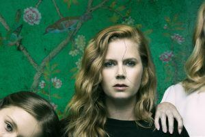 Could There Be a 'Sharp Objects' Season 2?