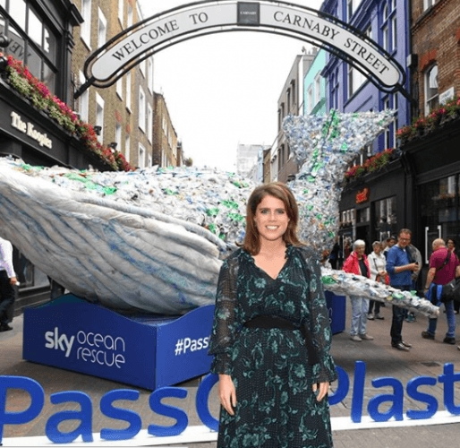 Princess Eugenie at charity event