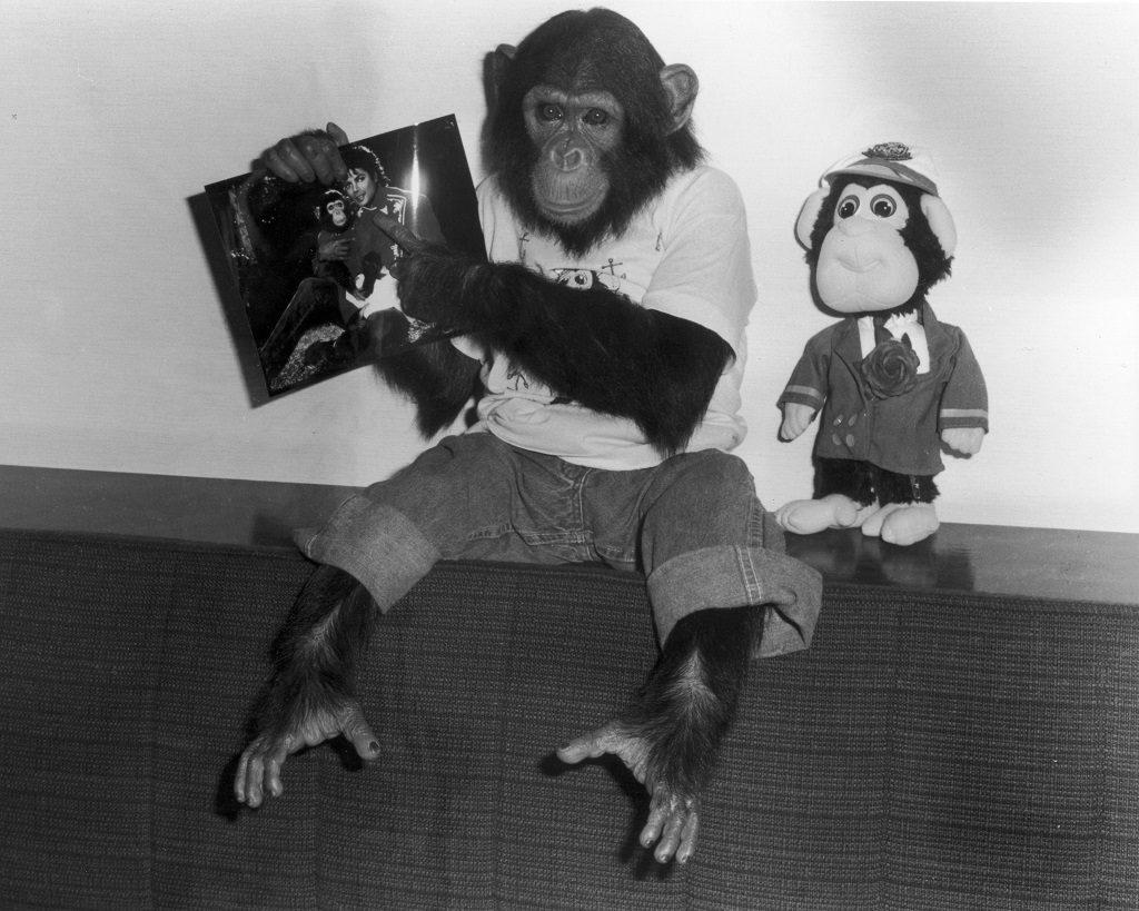 Bubbles the chimpanzee holds a photo of owner, Michael Jackson