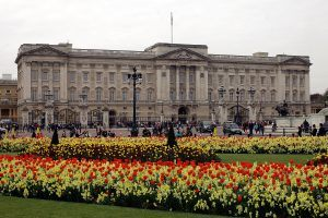 What's the Difference Between Buckingham Palace and Kensington Palace?